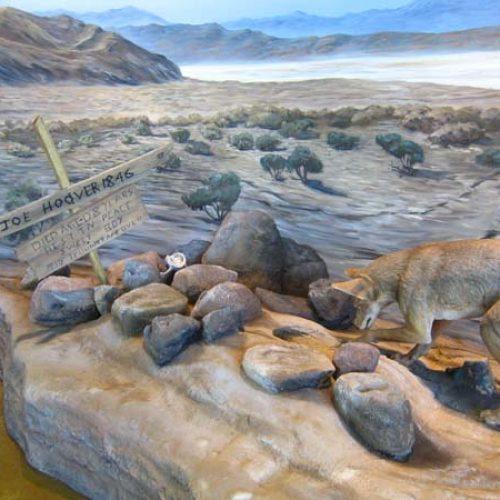 California Trail Exhibit